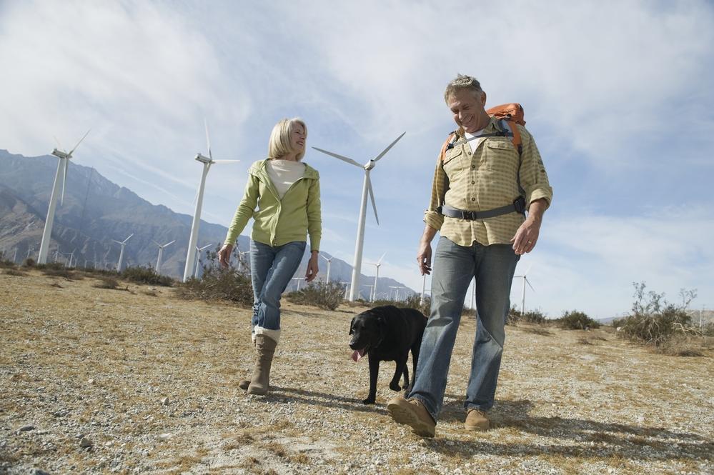 La importancia de fomentar la sostenibilidad