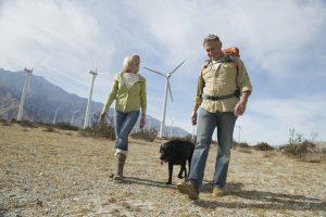 La importancia de fomentar la sostenibilidad y la eficiencia energética.