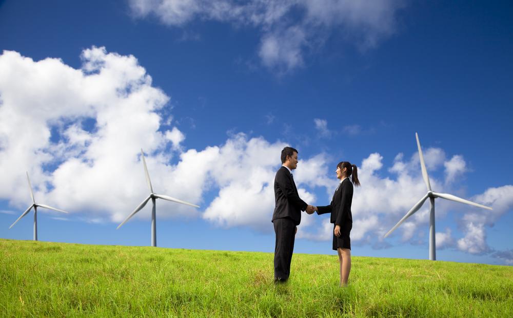 ¿Cómo convertirse en una empresa verde y sostenible?