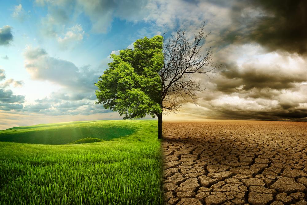 Cómo Afecta El Cambio Climático Al Precio De Luz Aura Energia